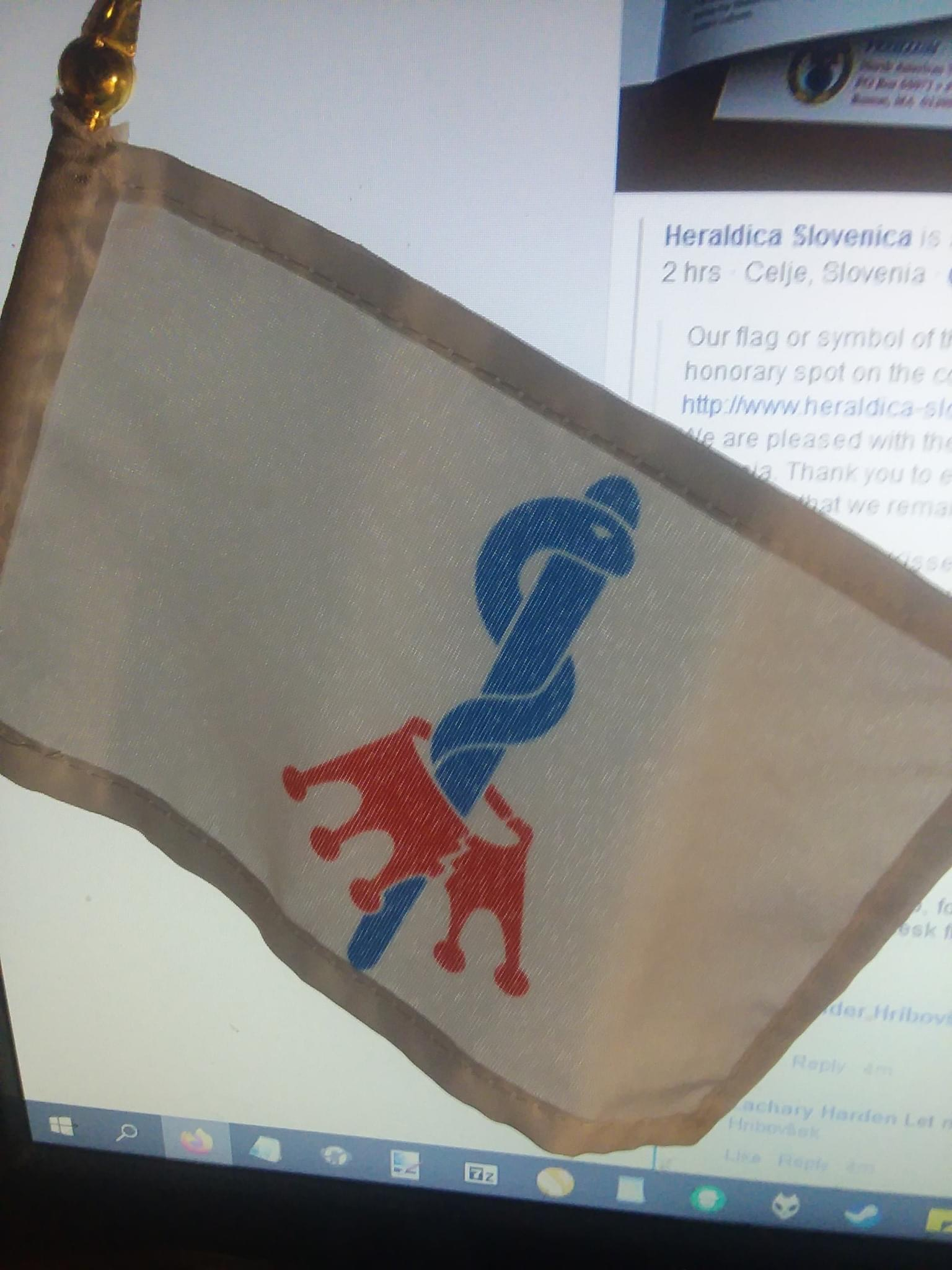 At the 54th meeting of the North American Vexillological Association (NAVA), held on June 13, 2020, the sponsors received 'anticorona' table flags. Photo: Zachary Harden, 1 July 2020.